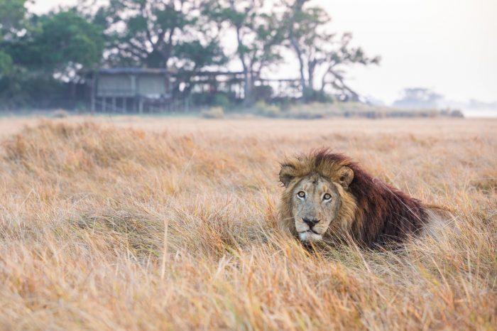 Zambia Wonders